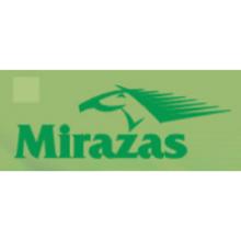 MIRAŽAS, Šiaulių sporto klubas