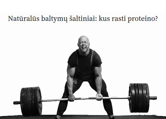 baltymu saltiniai