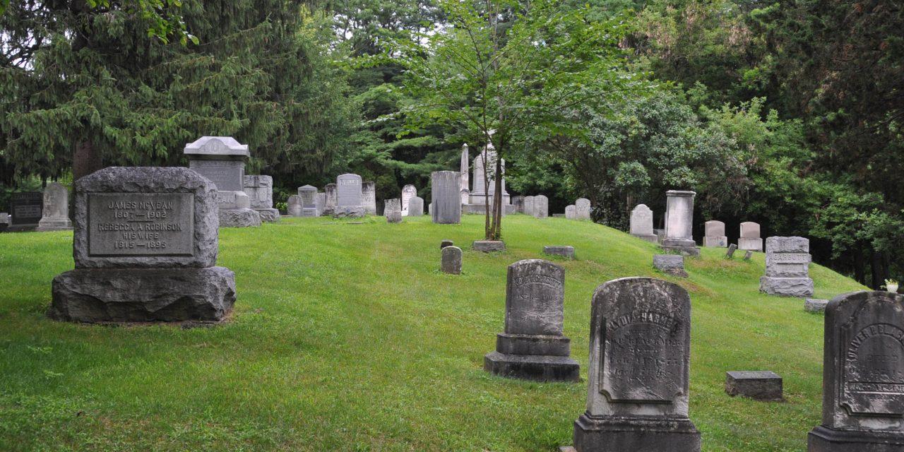Sutvarkyti kapu pavyzdziai